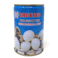 CHOYSCO Quail Eggs In Water 425g