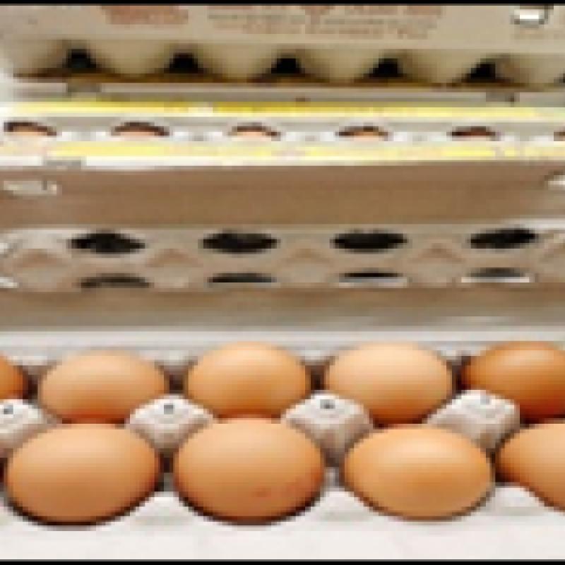 Egg (red)