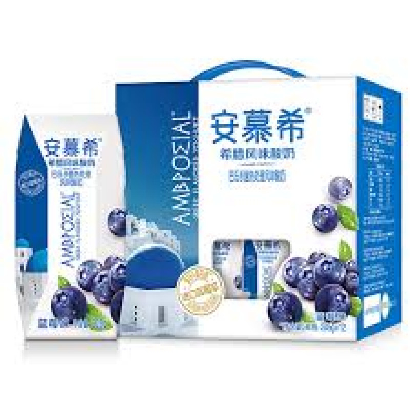 Blueberry Yogurt - 1 box
