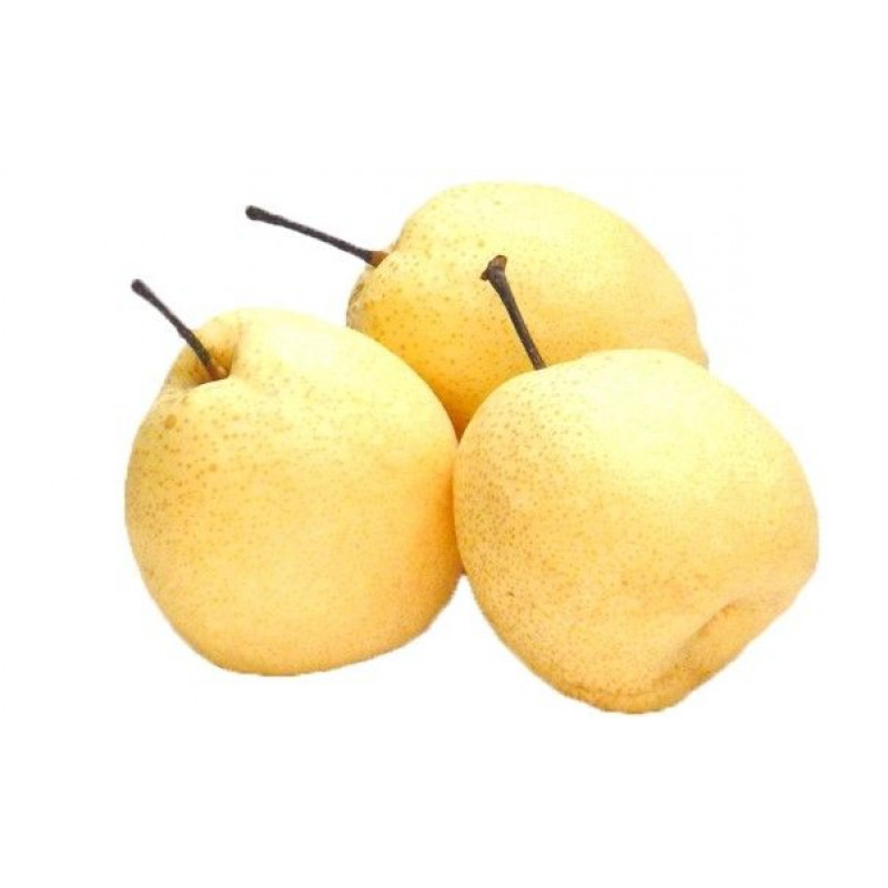 Asian snow pear (3 pcs)