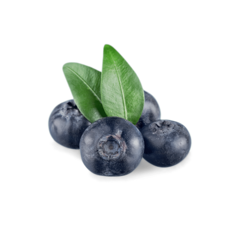 Blueberries -ORGANIC