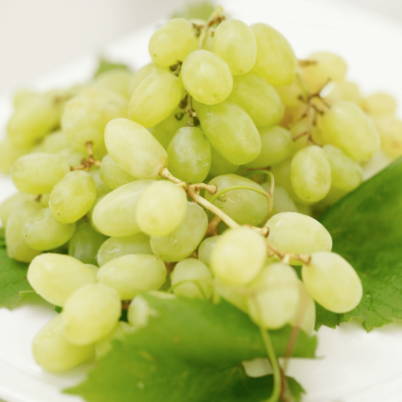 Green Seedless Grapes 1bag/1LB