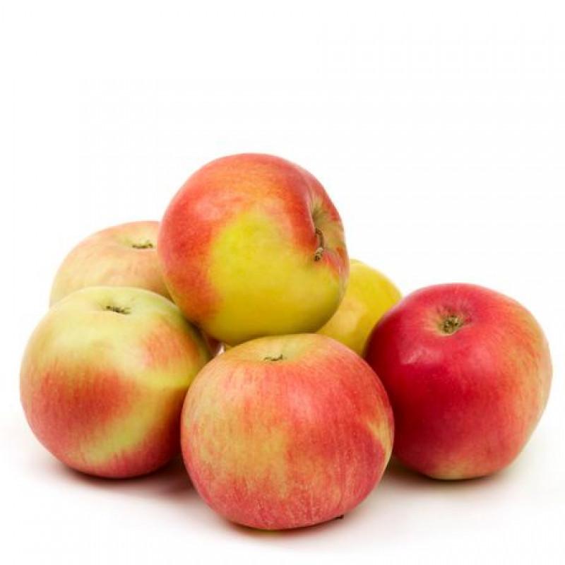 Mcintosh Apples - 3lb / bag