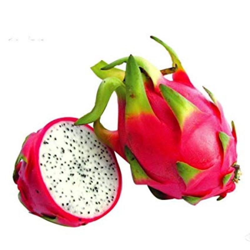 Dragon Fruit (1 pc)