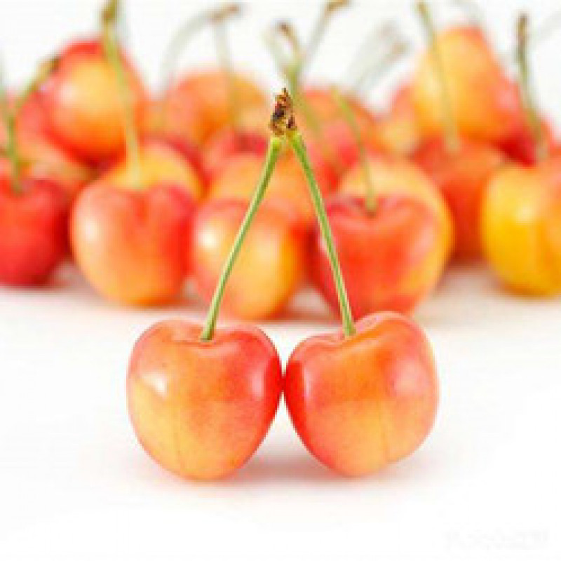 Fresh yellow cherries (about 1LB)