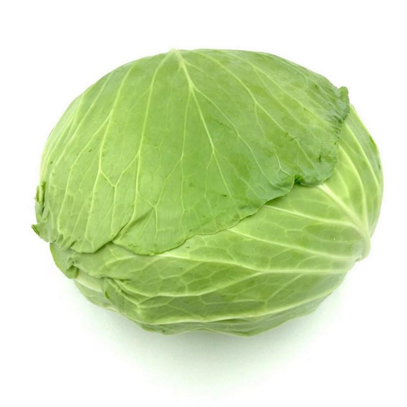 Korean cabbage - 1 piece