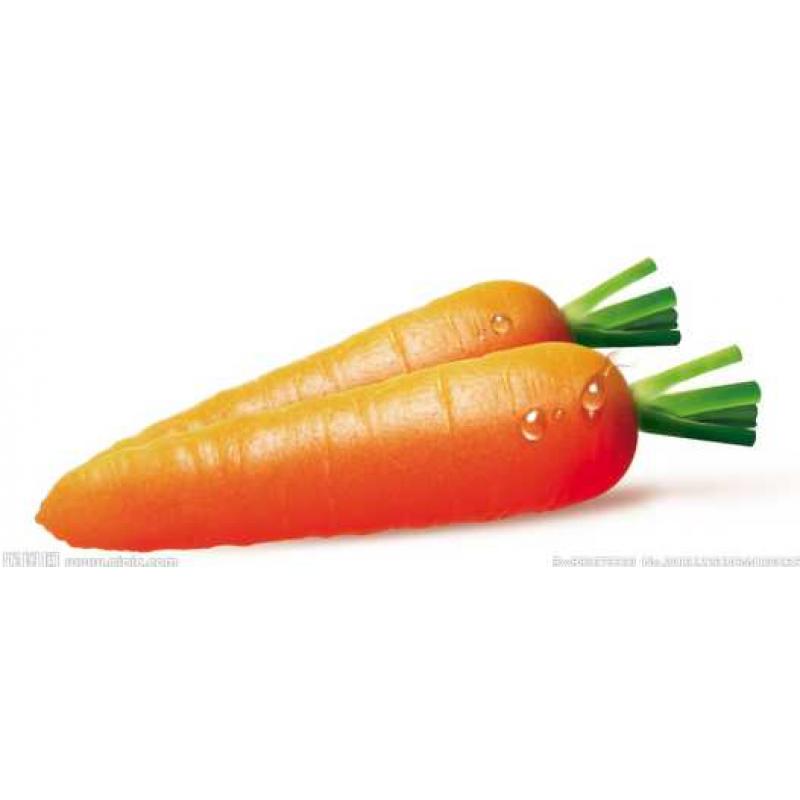 Carrots - 3pcs