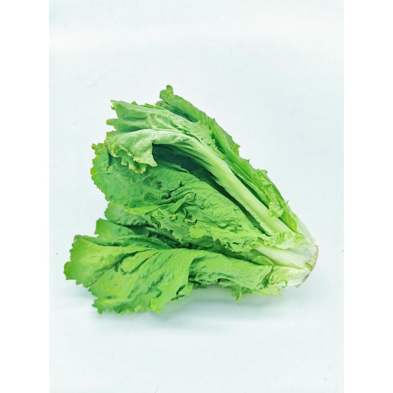 Green lettuce - 1 piece