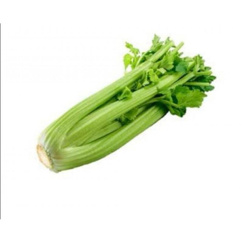 Celery - 1 CH